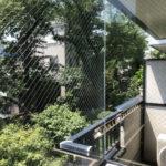 ガラス窓からの景色。