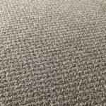 洋室のカーペットがループパイル(輪っか状)のため、爪がひっかかる猫さんがいるかもしれません。