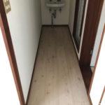 洗面台の前に廊下があります。洗面台の下など、猫さんトイレ置き場にもなりそうです。