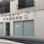 最寄りで猫にくわしい先生がいる平井動物病院