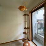 ご希望の方には、入居時につっぱり式のキャットタワープレゼント
